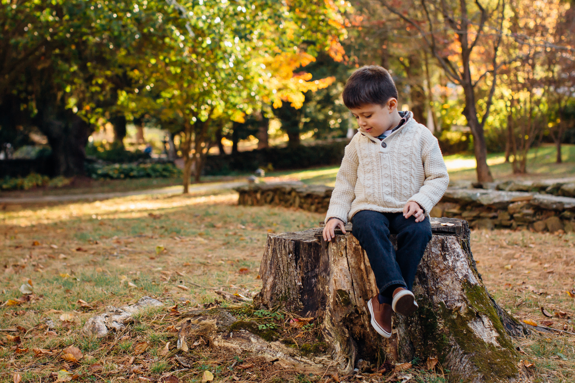 boy sitting on a stump